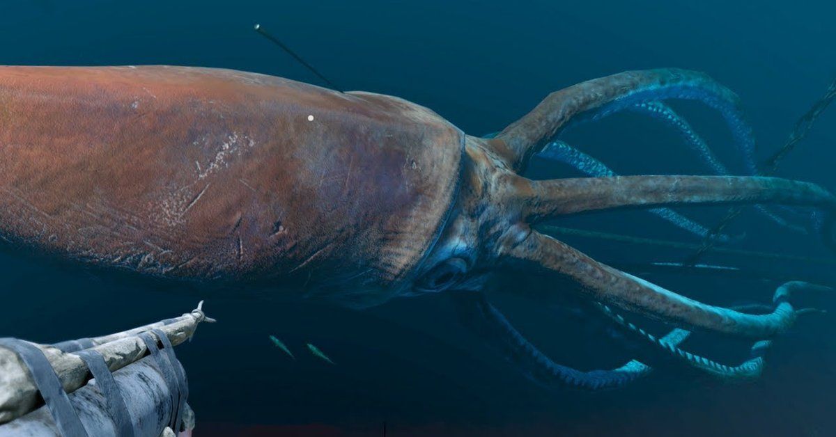 Scientists Found A Giant Squid Deep Down The Ocean ...