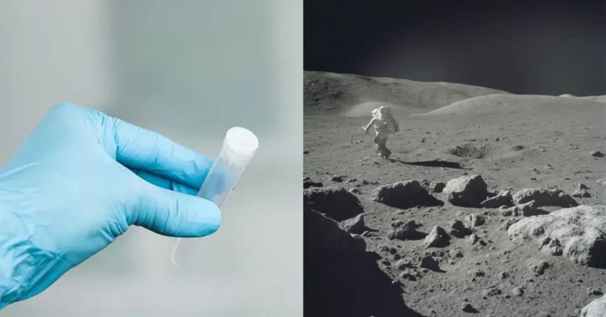 Scientists Want To Send 6.7 Million Samples, Including Sperm, To The Moon - Mobygeek.com